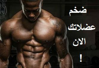 تضخيم عضلاتك